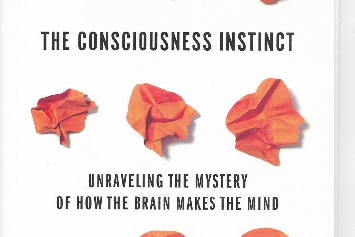 The Consciousness Instinctnew Book Examines The Mystery Of How The