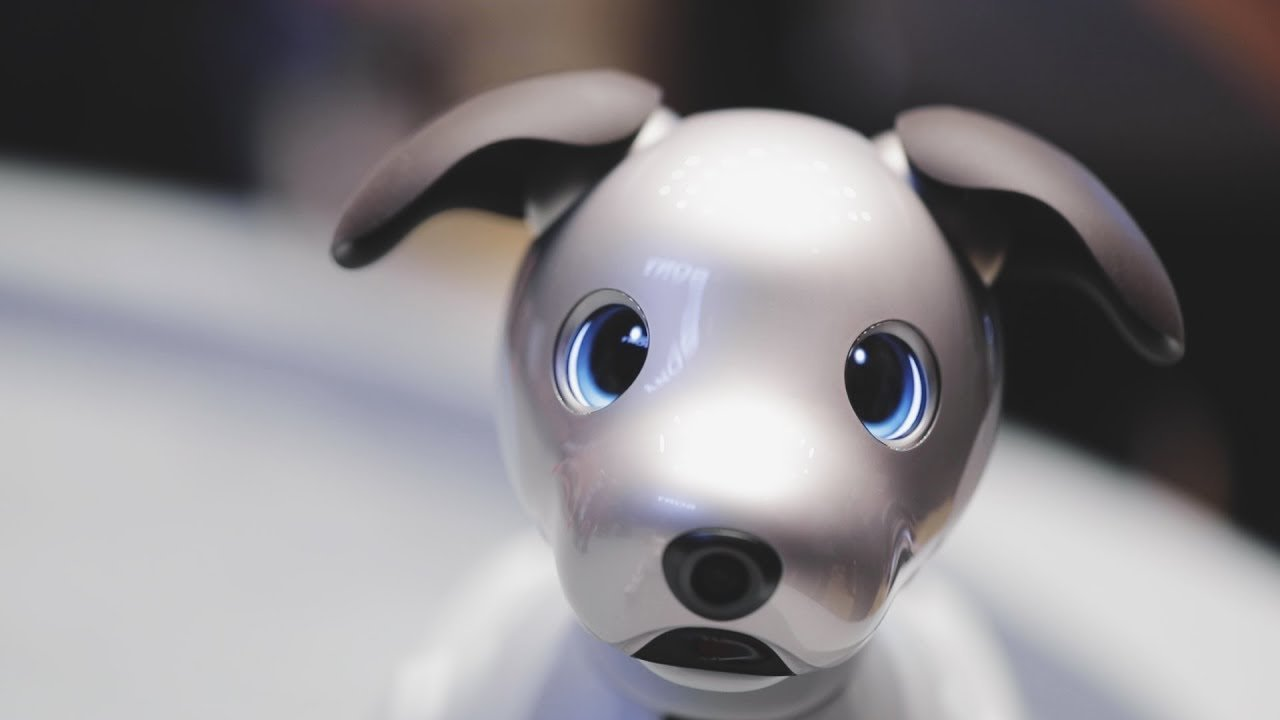 Sony's aibo robotic dog can si...