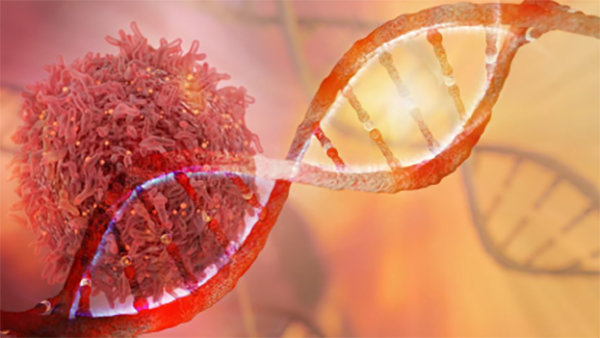 Breast cancer's deadliness is influenced by genes