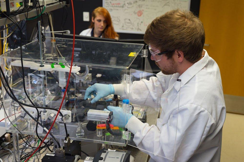 Microscopy trifecta examines how cells engulf nutrients, viruses