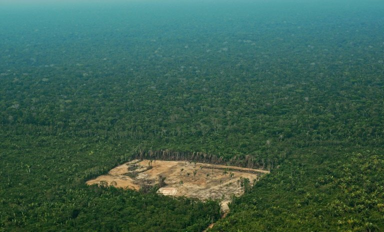 the destruction of the rainforest in brazil This video is a frightening compilation of some videos and photos from the destruction of the amazon created for school-project and also to conscience us.