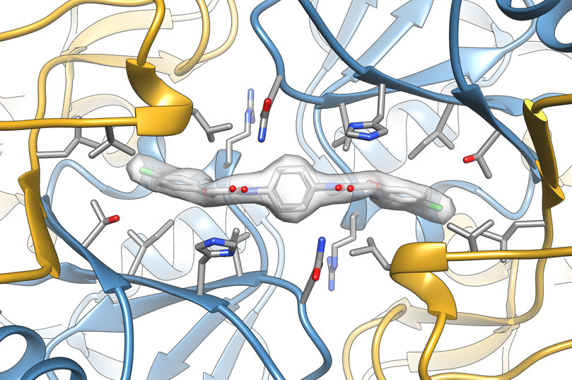 Detailed structure illuminates brain-enhancing drug's action