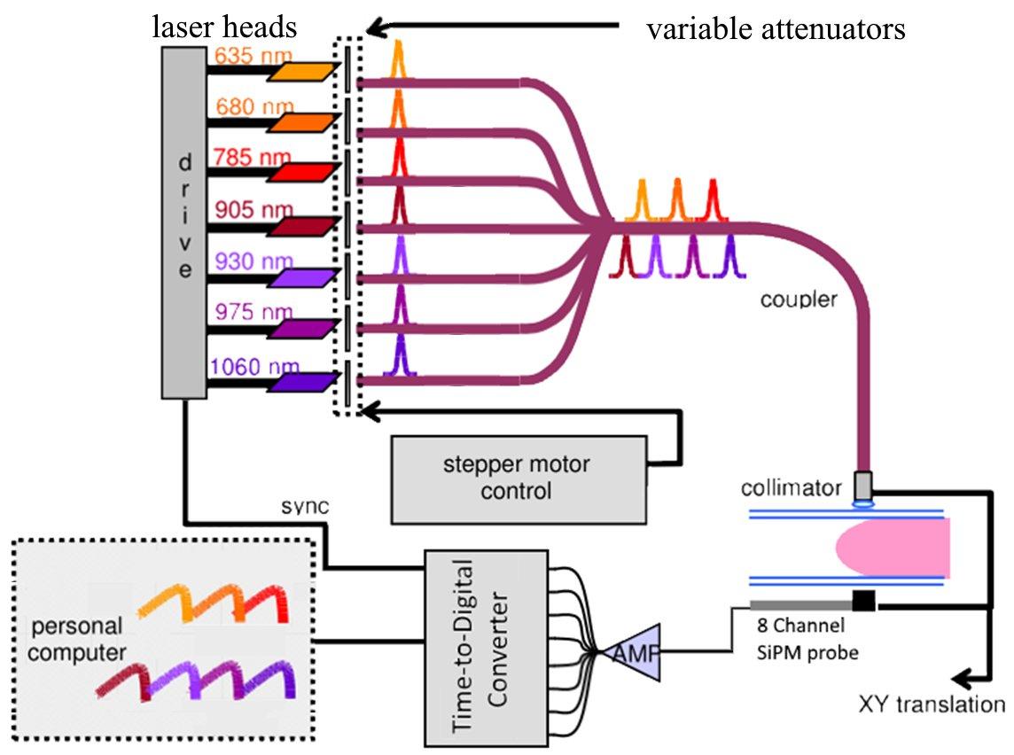 diagram of red light wiring library u2022 rh rsd intl com