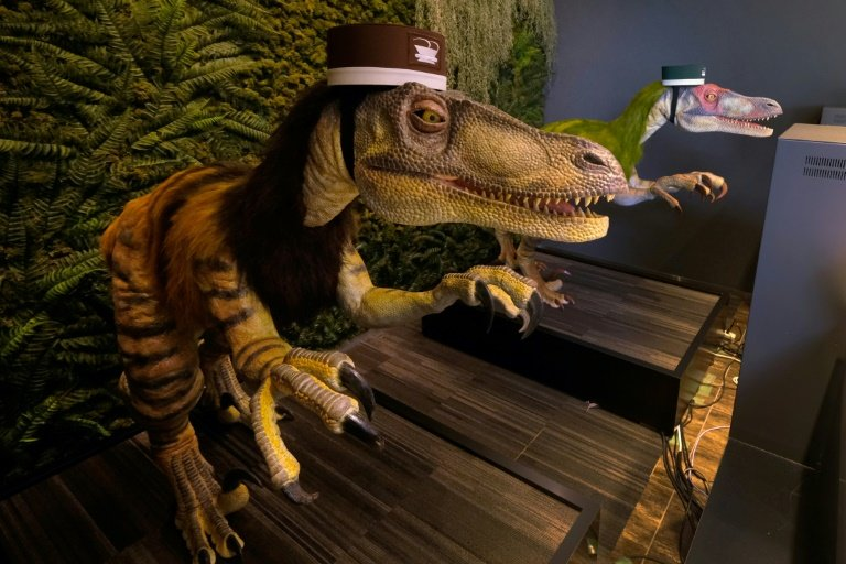 Robotel: Japan hotel staffed by robot dinosaurs
