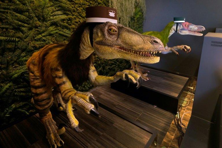 [Image: dinosaurrobo.jpg]