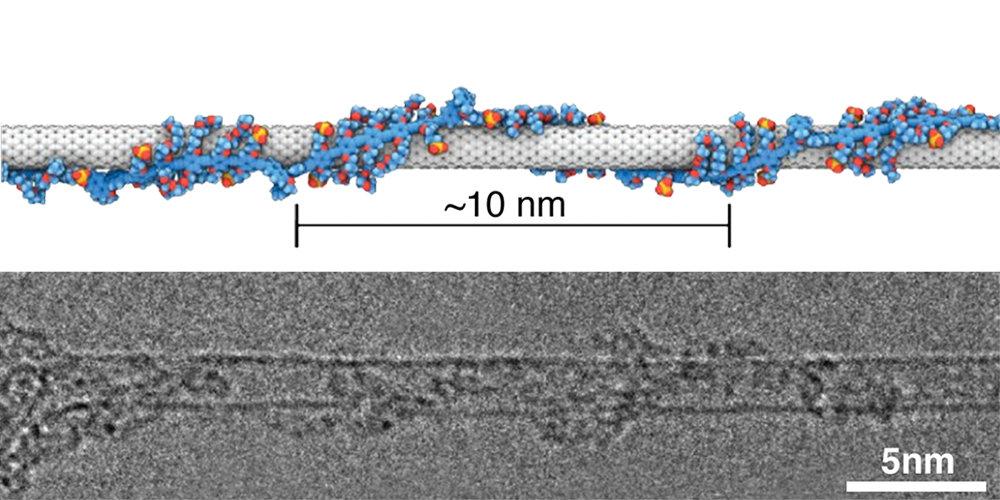 Future electronics may ride on new three-in-one particle