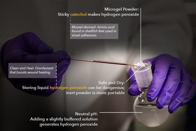 Microgel powder