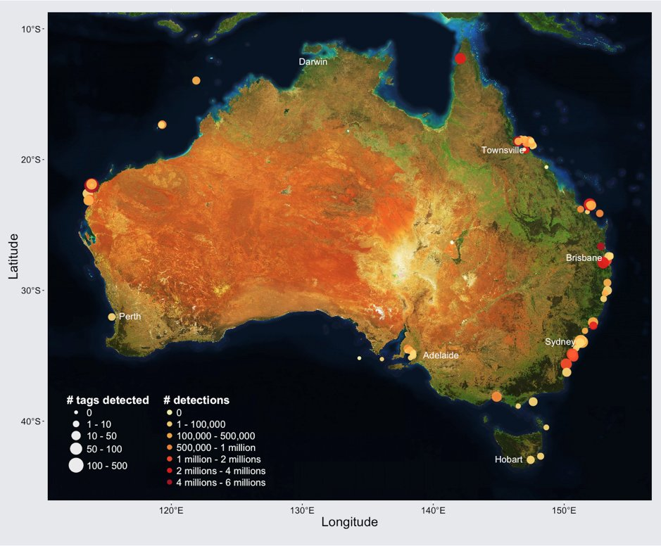 New Australian marine tracking system maps a decade of widespread ...