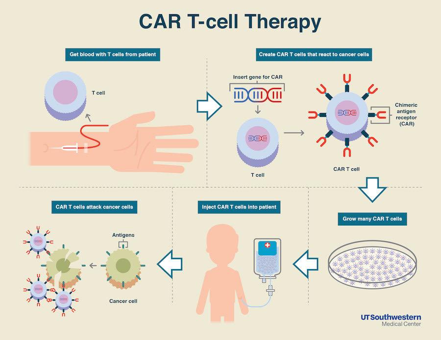 Image result for car t-cells