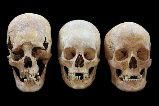 Skullsshowwo