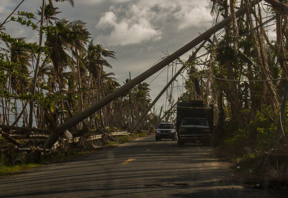 Nett Puerto Rico Drahtprodukte Bilder - Die Besten Elektrischen ...