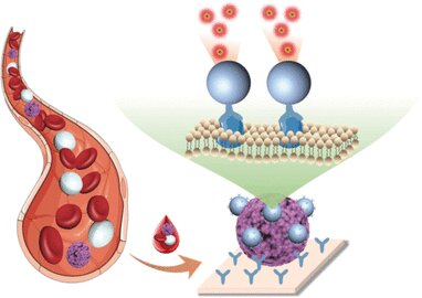 Direct detection of circulating tumor cells in blood samples