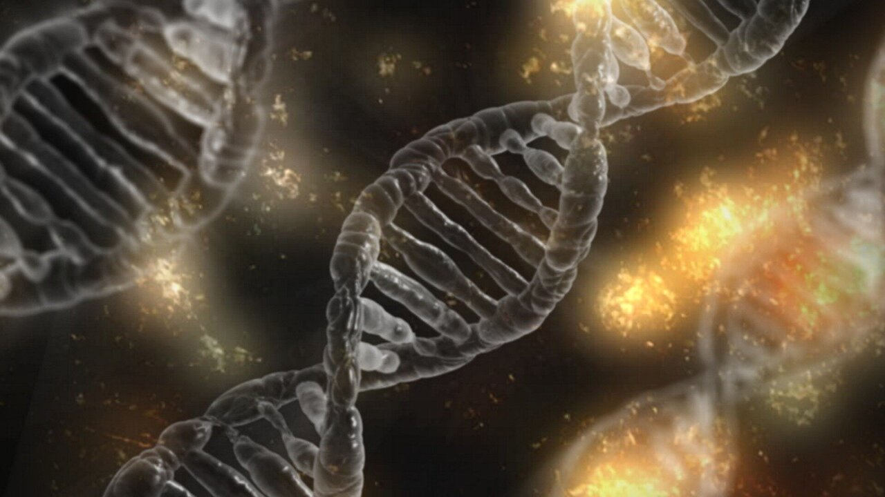 CRISPR-associated transposons able to insert custom genes into DNA without cutting it
