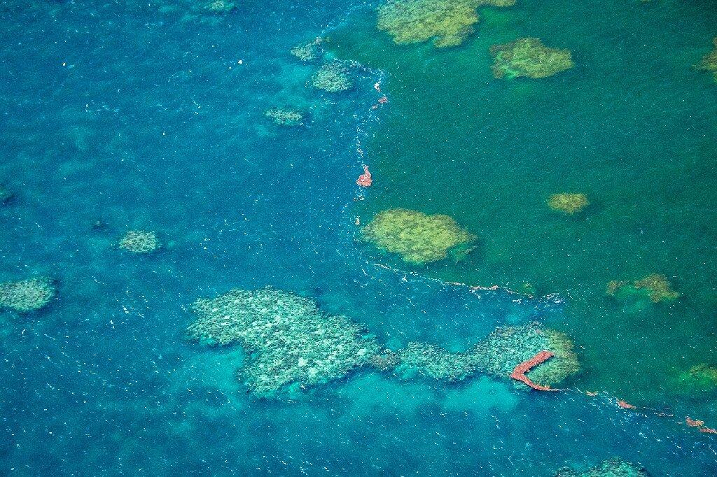 Australia Approves Vast Coal Mine Near Great Barrier Reef