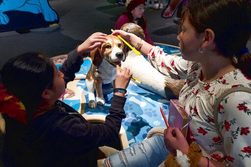 photo image California science exhibit explains the dog-human friendship