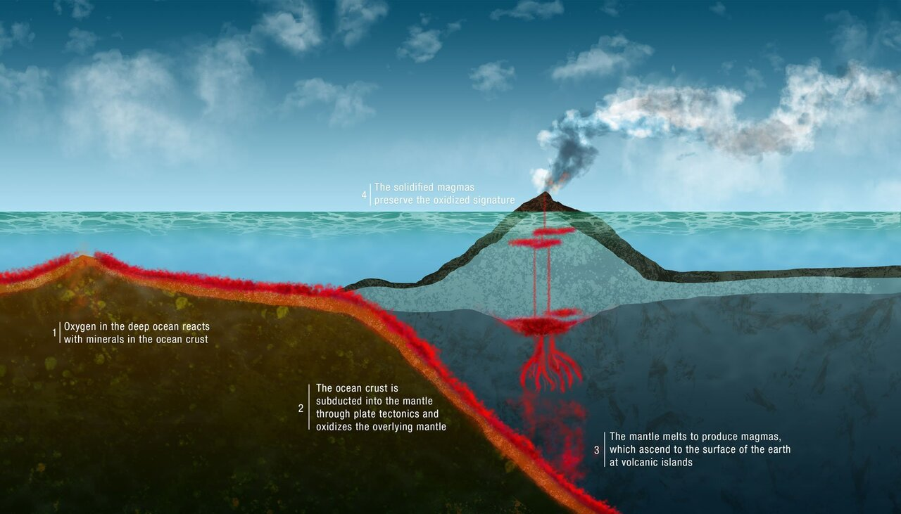 How life on Earth affected its inner workings