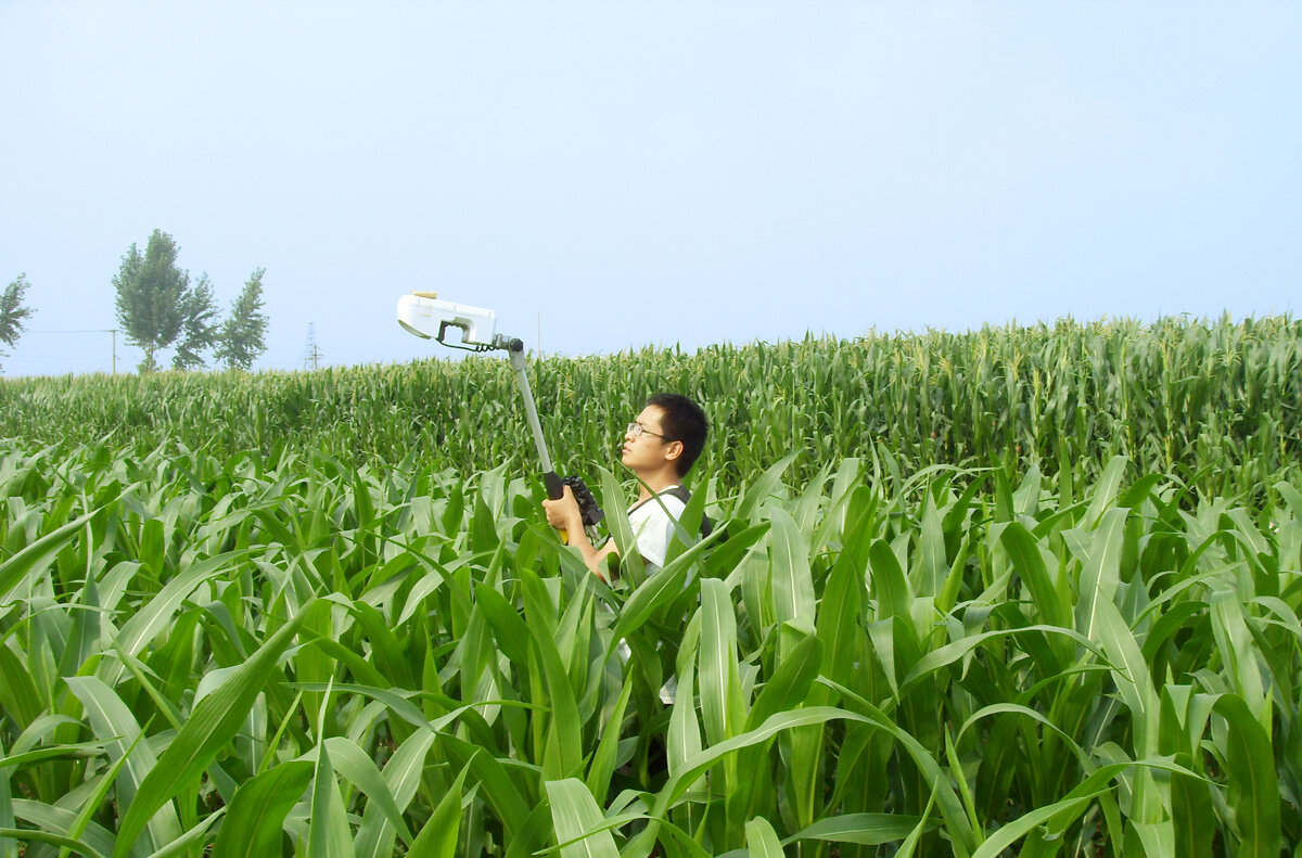 Right green for crop, environment, wallet