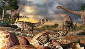 What the world's oldest eggs reveal about dinosaur evolution