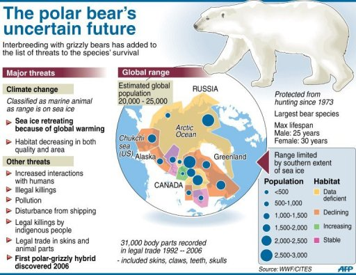 polar mammals research thesis ecosystem