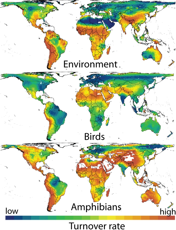 a research on birds and their ability to adapt to the environment That are preadapted or have high levels of adapt-ability to urban  their nutritional environment  diverse range of birds (robb et al 2008) less research,.