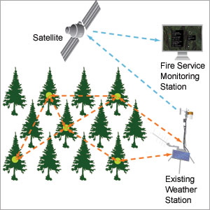 Preventing Forest Fires With Tree Power Sensor System