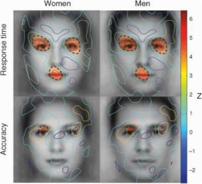 Male or female? Coloring provides gender cues