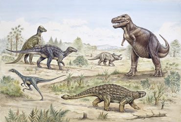 a description of the extinction of the dinosaurs 65 million years ago Developments from 265 million years ago (the triassic period) and the first dinosaurs, to the beginning of the cenozoic era 655 million years ago.