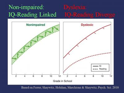 Dyslexia defined new study uncouples reading and iq over time ccuart Choice Image
