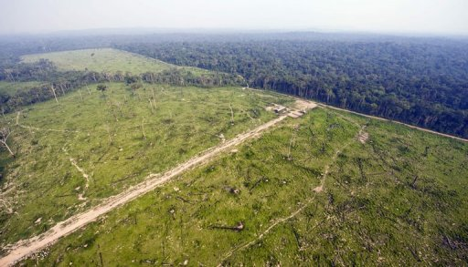 an argument against the brazilian governments destruction of the amazon forest Destruction of brazil's amazon jumps 28% brazil's government reported thursday that annual destruction of its amazon rainforest jumped by 28 percent after four straight years of declines, an.