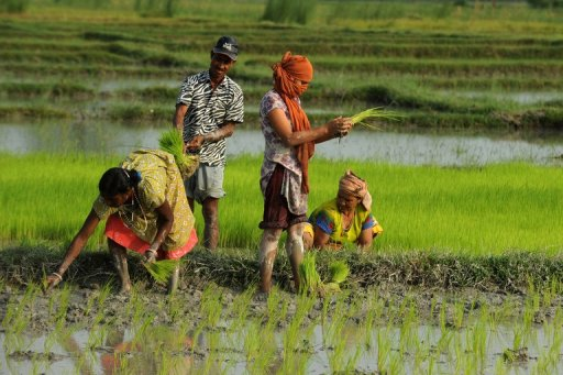 a look at the green revolution of the 60s and 70s Seem to be oversupply and glut in three short  the agricultural revolution in  south asia: what has  1970) this does not mean that the new high- yielding  wheats in india and pakistan have not  early 1960s as a result of new  technology.