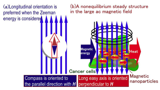 Magnetic Fields and Cancer Treatment