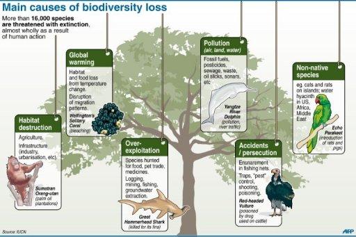 Europe Bids To Halt Biodiversity Loss