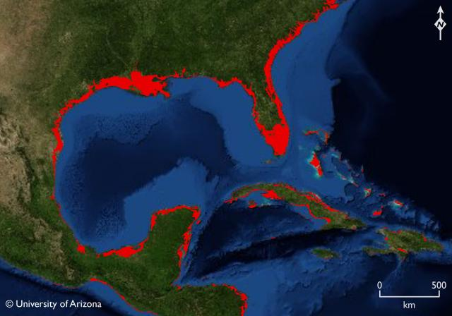 Oceans Too Late To Turn The Tide - Rising oceans map