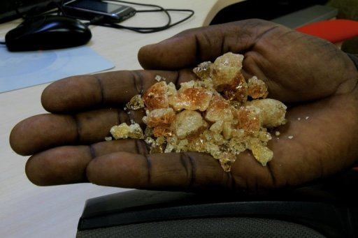 gum arabic potential cure for sudanese ills