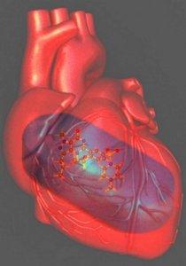 Heart failure viagra can i cut 20mg cialis