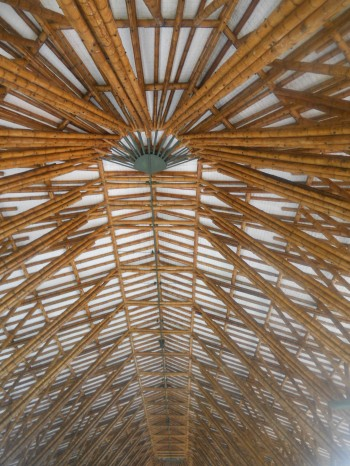 Bamboo the new super construction material for Bamboo roofing materials