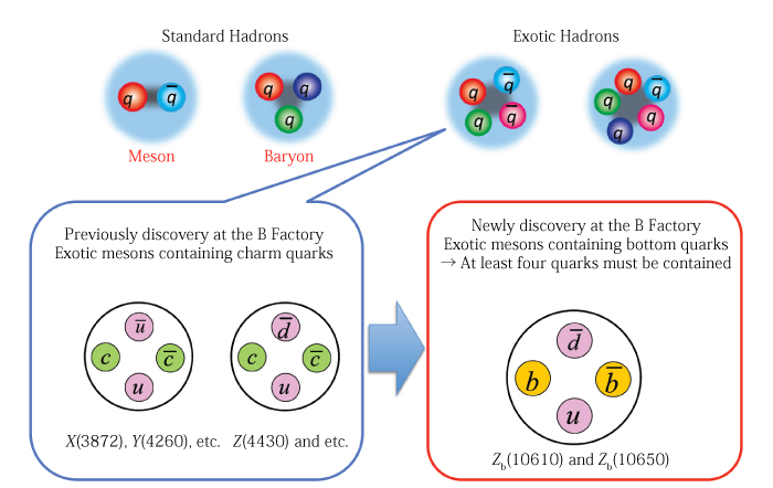 new basic particles called quarks may be discovered using particle accelerators