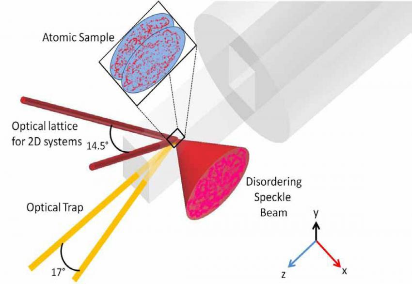 conduct: Probing the role of disorder in quantum coherence