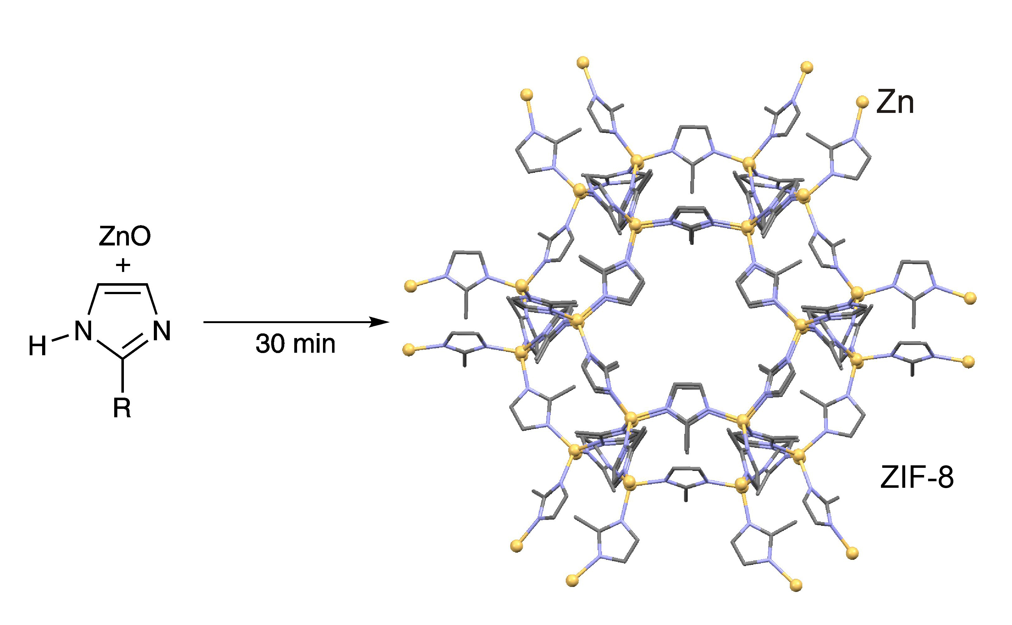 Cells synthesise new organic components