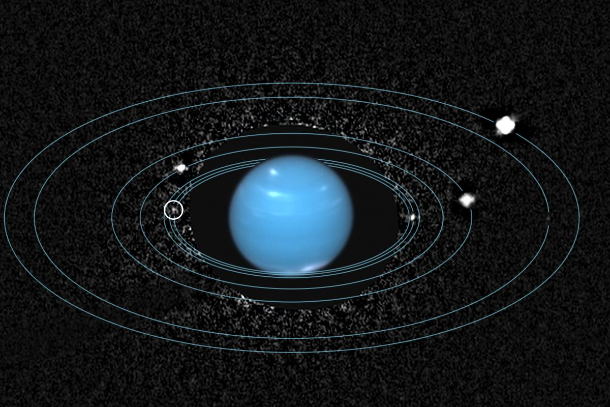 archival hubble images reveal neptunes lost inner moon