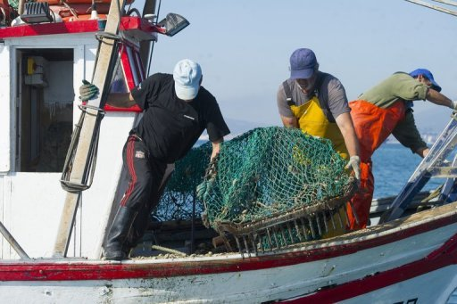 Spanish fishermen say gibraltar reef ruins catch for Fish in spanish