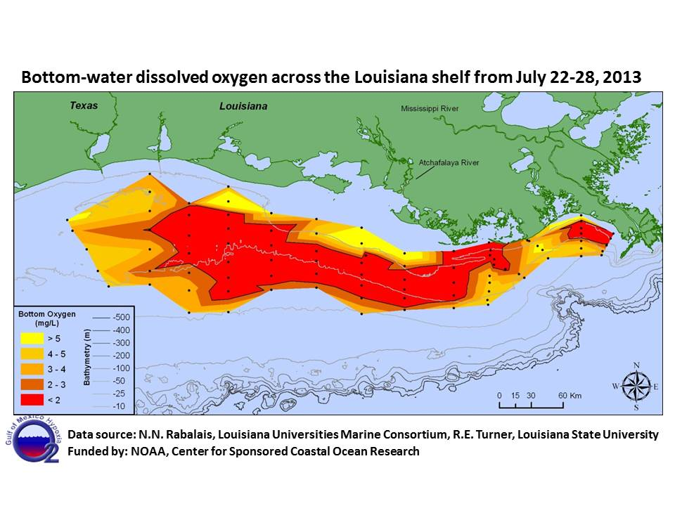 Scientists Find Large Gulf Dead Zone But Smaller Than