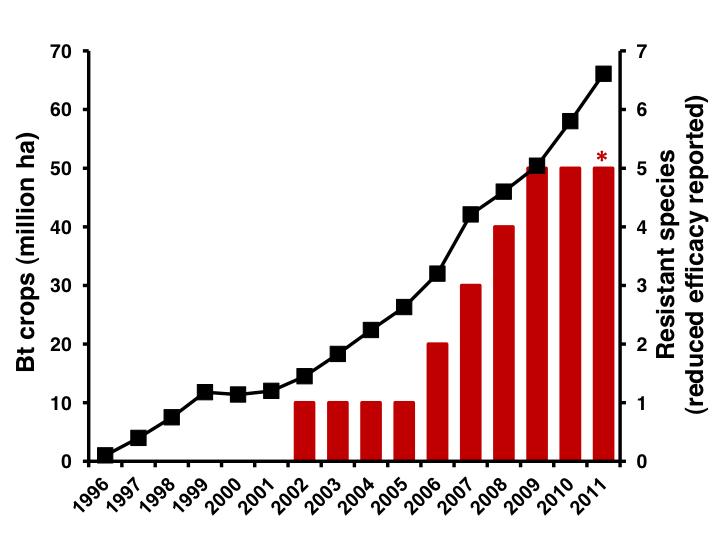 shop Viruses and Human Disease 2002