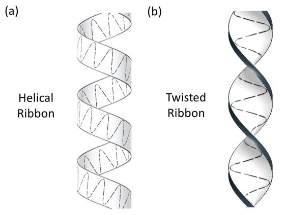 researchers discover sperm move along a  u0026 39 twisting ribbon u0026 39