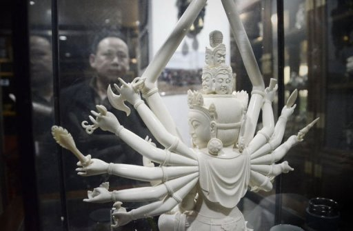Charging China demand drives deadly ivory trade