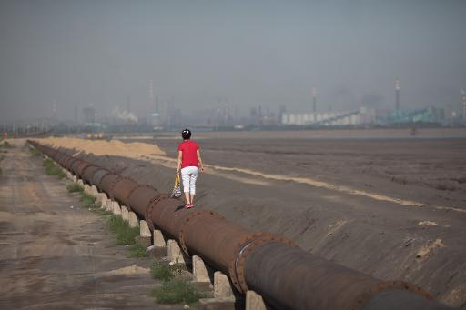China Trims Rare Earth Quota For H1 2014