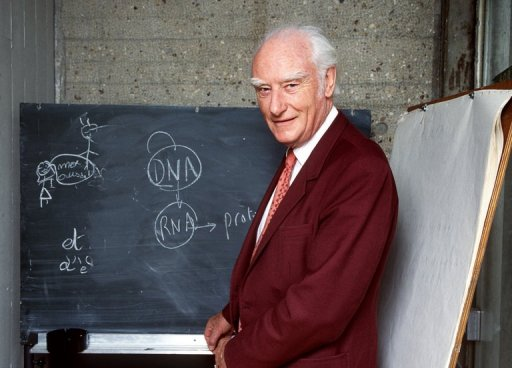 francis cricks work in discovering the dna molecule Nobel laureate james watson opens ted2005 with the frank and funny story of how he and his research partner, francis crick, discovered the structure of dna.