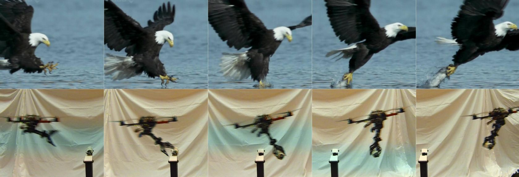 Eagle Eyeing Researchers Design Swooping Quadrotors With Claws W Easy Lawnmower Physics Video
