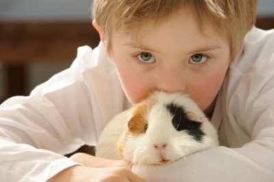 Homeless and abused children benefit from animal-assisted ...