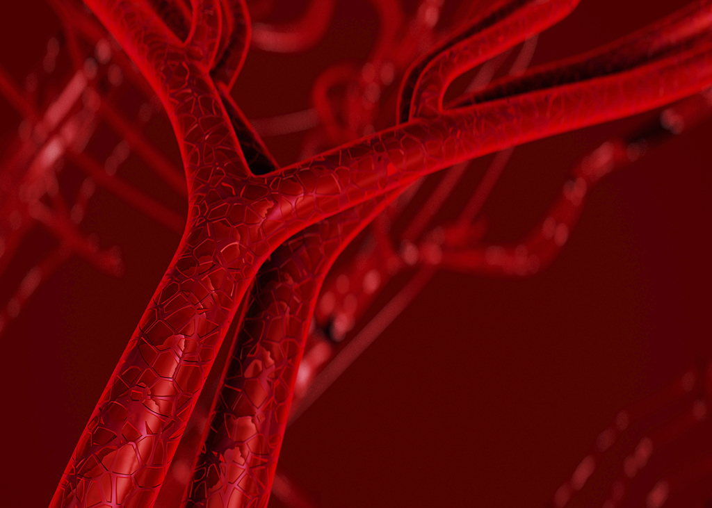 Key regulator of blood vessel formation could be a potential new ...